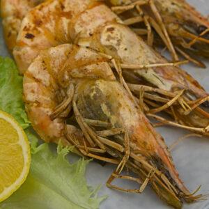 king prawns closeup